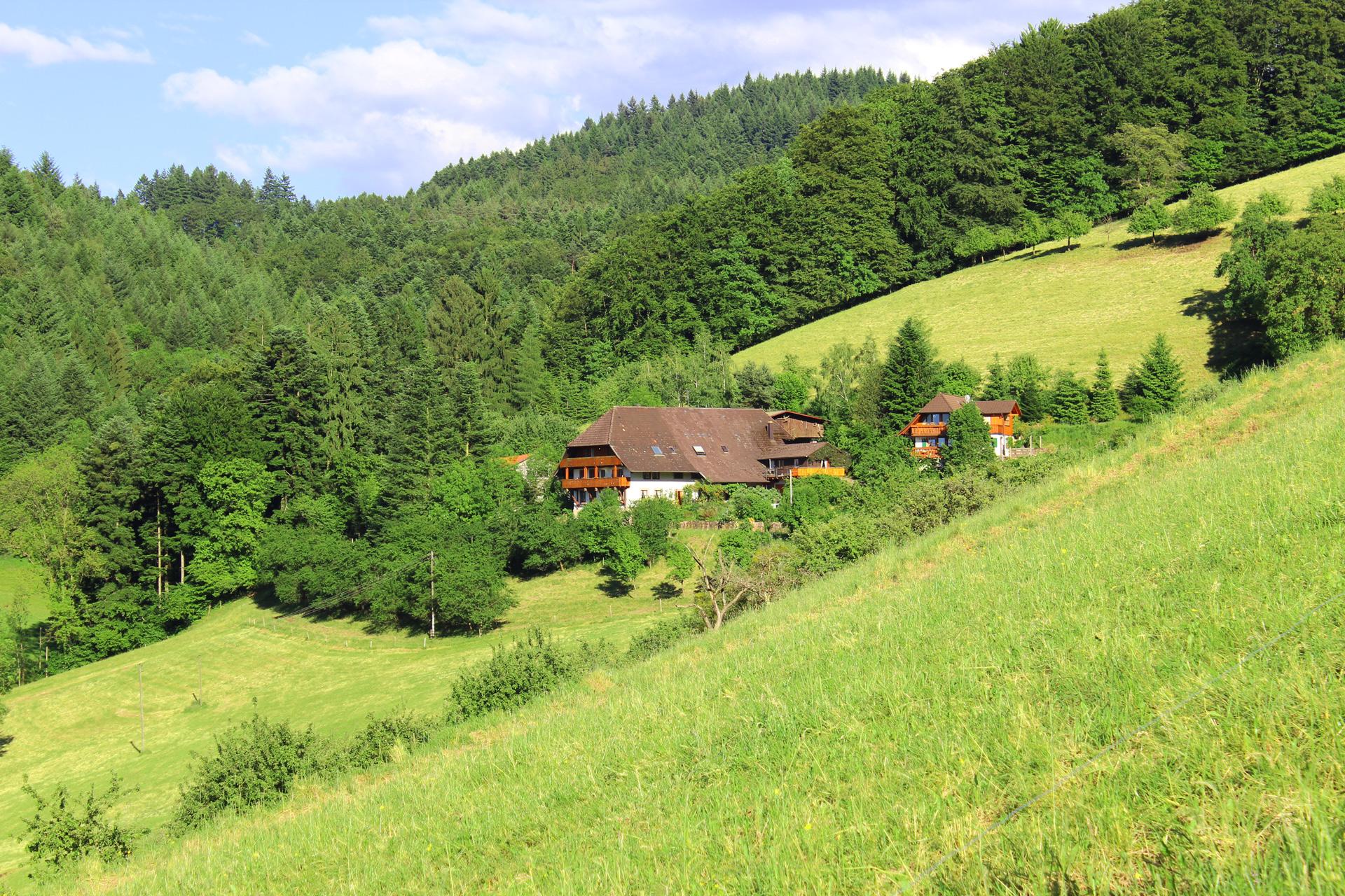 Schwörerhof